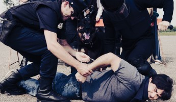 Interlocutory appeals in police excessive-force cases